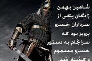 شاهین بهمن زادگان